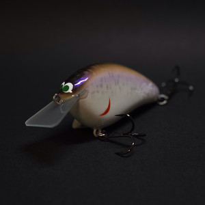 "GEL-FLAT  ""Loach Back Shad"""