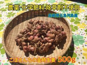『金時生姜』500g
