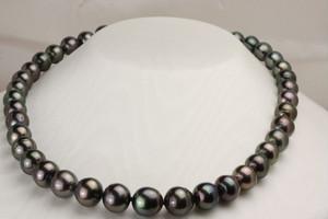 黒蝶真珠真珠ネックレス11㎜