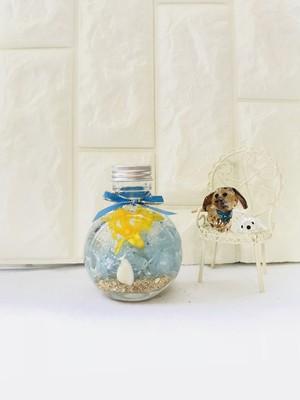 ハワイのサンシャイン ハーバリウム 猫瓶 おしゃれ 可愛い 通販 ギフト プレゼント オレンジ お祝い 愛媛県松山市