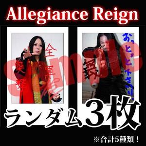 【チェキ・ランダム3枚】Allegiance Reign