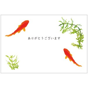 Y3005(金魚)