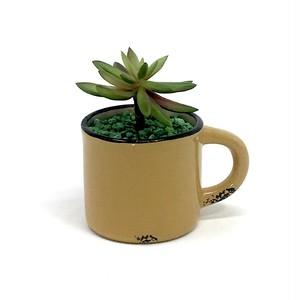 eco plant 020 フェイクグリーン (多肉植物) / 陶器製花器