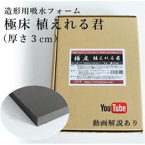 【レイアウト用資材】極床植えれる君(厚さ3cm)