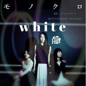 ☆過去公演値下げ中☆モノクロ公演DVD[白チーム]