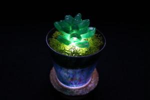 Healing lamp 多肉植物 ver.2
