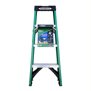 WERNER Ladder  225 lbs/GREEN