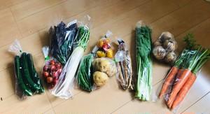 土曜日発送のお野菜セレクト。前日金曜日15時締切