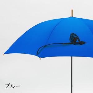 【ミクロチュン付き】tail サンコウチョウの傘 ブルー