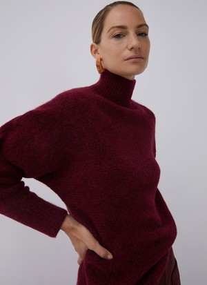 ALPACA BRENS PARKINGS COLLAR SWEATER
