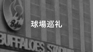 球場巡礼「藤井寺球場」