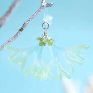 海藻ヒトツマツのピアス・イヤリング(若草色)