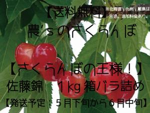 さくらんぼ【佐藤錦・送料無料】1kg箱 バラ詰め ≪予約販売≫