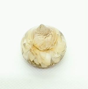 【夢宝珠】オルゴナイト