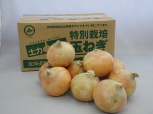 10kg箱 特別栽培玉ねぎ Lサイズ 北海道新篠津産