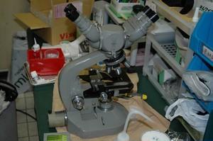 【中古品】  オリンパス4眼顕微鏡セット  ※送料込み価格(沖縄・離島除く)