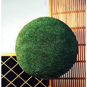 杉玉(80センチ玉)