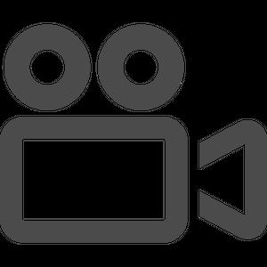動画データ (30秒/リクエストあり)