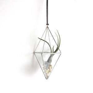 "hanging terrarium ""八面体""  / silver [エアプランツ]"