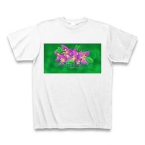 「光を感じるブーゲンビリア」Tシャツ