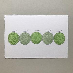 postcard (melon)