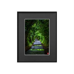 緑のトンネル(ブラックボード)A4サイズ