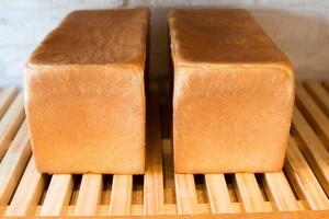 【パンセット】レピジャポネ食パン 2本セット