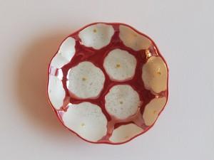 赤花真珠 まめ皿