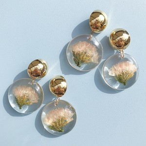 clear plate flower / apricot statice