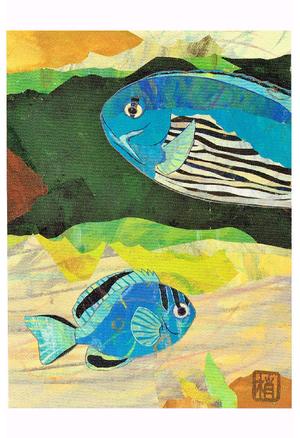 2011年「ヒレナガヤッコ」絵はがき