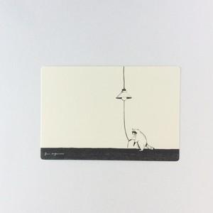 ポストカード アライグマ