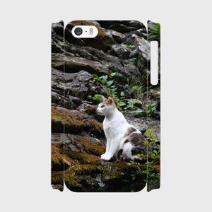 城猫 和歌山城02  iPhone5/5s/5c/SE/Android