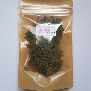 【鎌倉野菜】 にんじんの葉 M袋