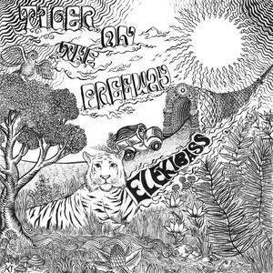 ELEKIBASS  6th 12inchi Analog Record「Tiger on the freeway」
