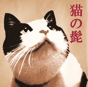 CD「猫の髭」