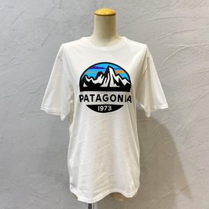 patagonia/フロントプリントT