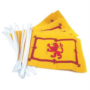 バンティング・フラッグ(英国の万国旗)【ランパントライオン】Worldwide Flags 90050-LION