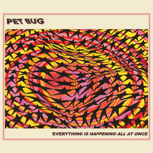 "[Tape] Pet Bug ""Everything Is Happening All At Once"""