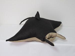 オニイトマキエイ Manta ray
