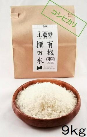 《H30年産・新米》有機棚田米コシヒカリ 白米 9㎏