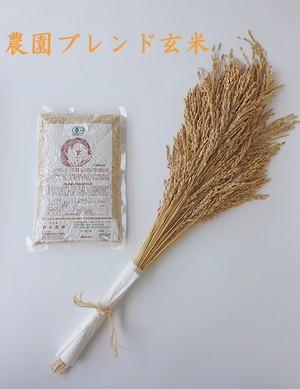 【500g】有機農園ブレンド玄米