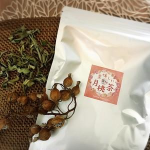 【定期便】美味しい(実入り)月桃茶ティパック(葉.実4g)×31包