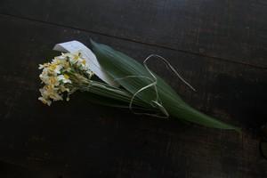 水仙のブーケ+seed of life vol.0【1/14お届け】