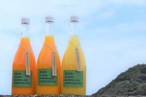 柑橘ジュースセットA【3本】(温州みかん・伊予柑・デコポン)