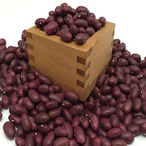 金時豆 1kg [レターパック]