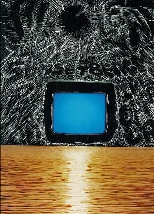 "STAGNATION ""Violent Noize Sunset Beach Party"" Live at Enoshima Oppa-La DVD"