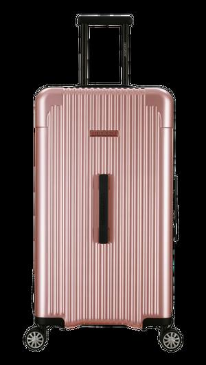 クルーズ☆アップルローズA01-C・100リットル:超大容量!スーツケース