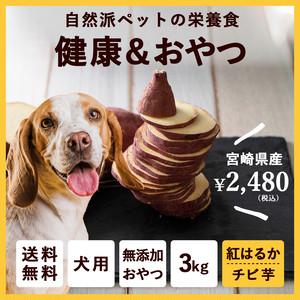 【送料無料&増量キャンペーン】ペットのおやつ さつまいも 紅はるか 3kg 宮崎県産 熟成サツマイモ 生芋