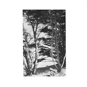 Rick Deitrick『Gentle Wilderness』(Tompkins Square)