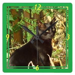 朝の日曜日の柱時計の黒猫 スクエア壁時計